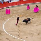 Pixwords BULLFIGHTING